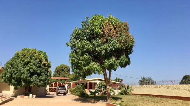 Afrikaya Nursery School 1